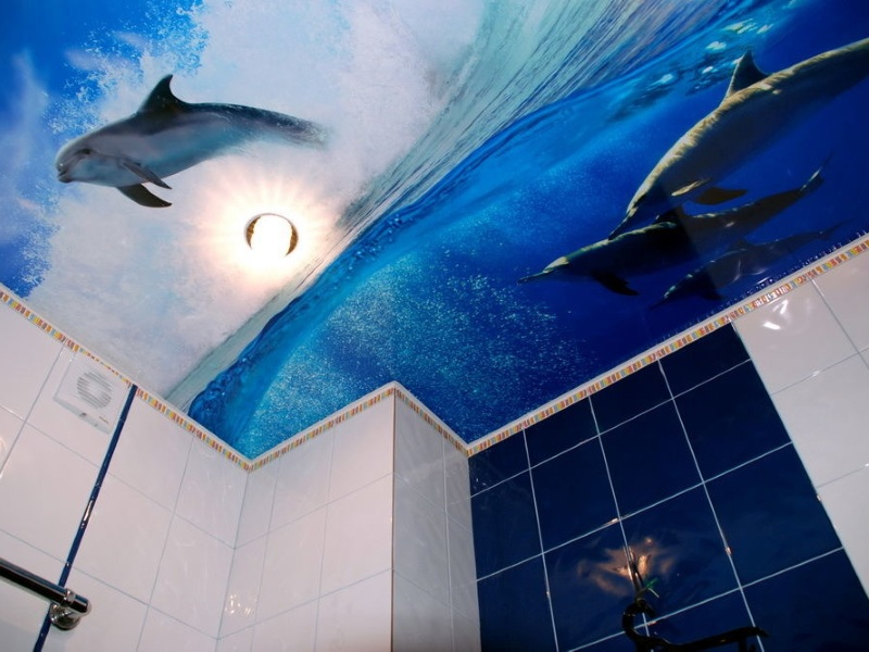 The Ceiling in the Bathroom. Which to Choose?